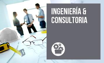 Ingeniería & Consultoría